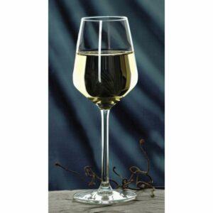 כוסות יין CARRE